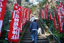 20070204-sasukeinari.s040.jpg
